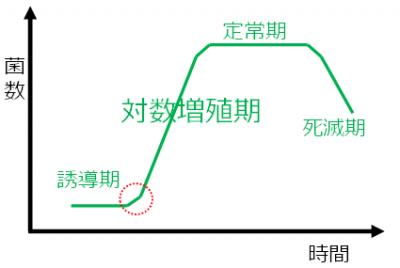 微生物の増殖曲線
